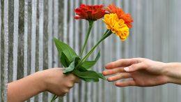 hand-1549224_960_720