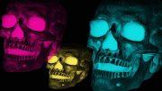 skulls-2308633_960_720