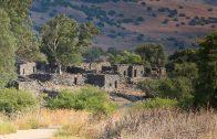 Vsite Live du Golan avec des temoignages de pionniers