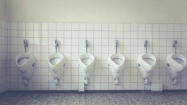 toilet-1542514_960_720