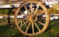 cart-1049327_960_720 (1)