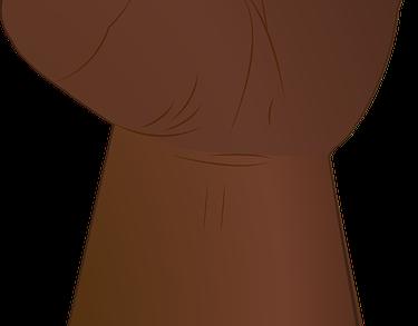 fist-1741100_960_720