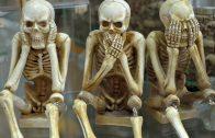 skeletons-1617539_960_720